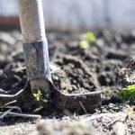 sol-jardin-agriculture-moins-acide