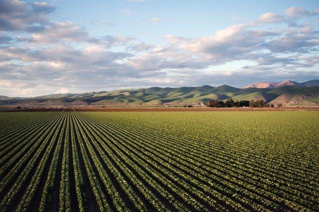 bilan-carbone-agriculture